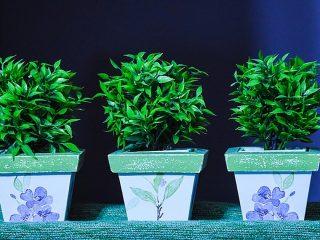 Passende kunstplant voor ieder interieur